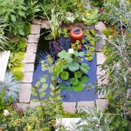 Formal Pond with Bubbling Pot