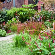 Perrenial Garden with Greens and Reds
