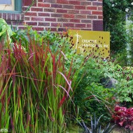 Perrenial Garden with Tall Grasses