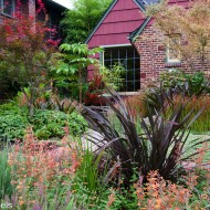 Perrenial Garden w/ Japanese Maple - Tall Grass and Flowers