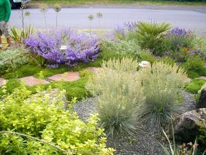 Mediterranean Gravel Garden, Drought-Tolerant