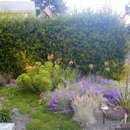 Mediterranean Gravel Garden - Designing with Color