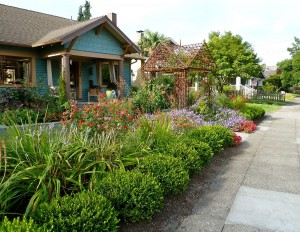 Formal Mediterranean Garden in Portland, Oregon