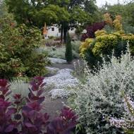 Mediterranean Rock Garden - Designing with Color