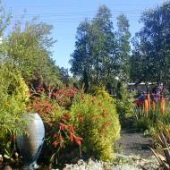 Mediterranean Rock Garden - Landscape in Portland, Oregon