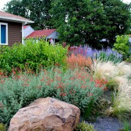 Drought-Tolerant Garden with Gravel, Portland, Oregon