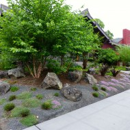 Native Garden with Trees and Boulders - Portland, Oregon