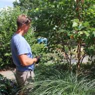 General Tree Pruning