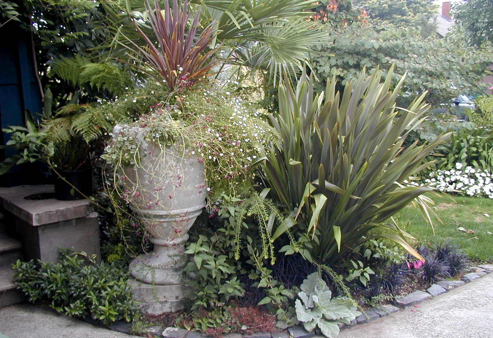 Woodland Garden Feature Image